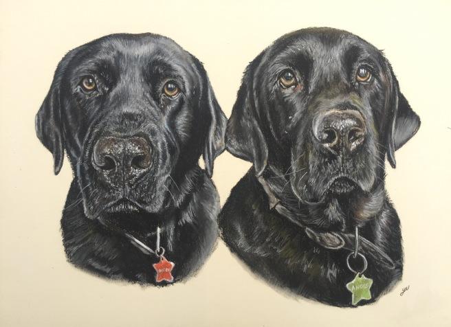 Angus and Digbey