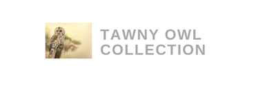 Tawny Owl Collection