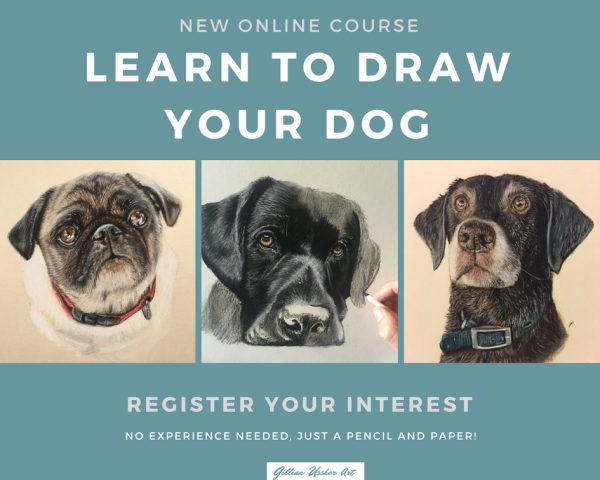 Learn to Draw your Dog