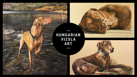 Updated: Portraits and paintings of 80 Hungarian Vizslas.