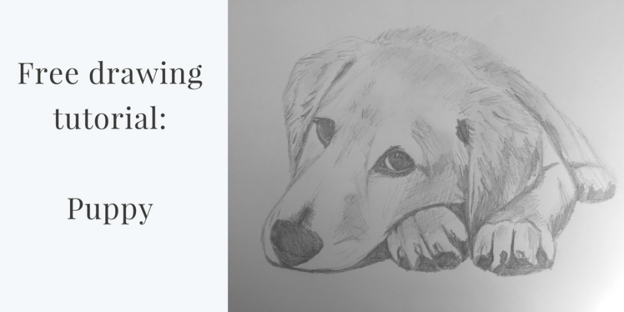 Free Drawing Tutorial – Puppy