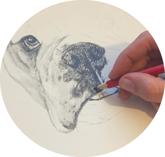 Learn to Draw your Dog-4.png
